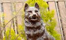 Husky Sculpture