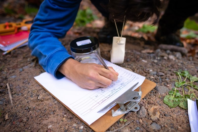 Students writing findings in the field.
