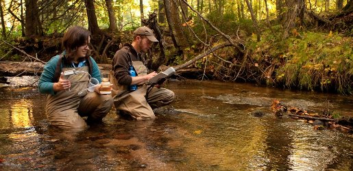 Applied ecology professor and student conducting research in a stream.