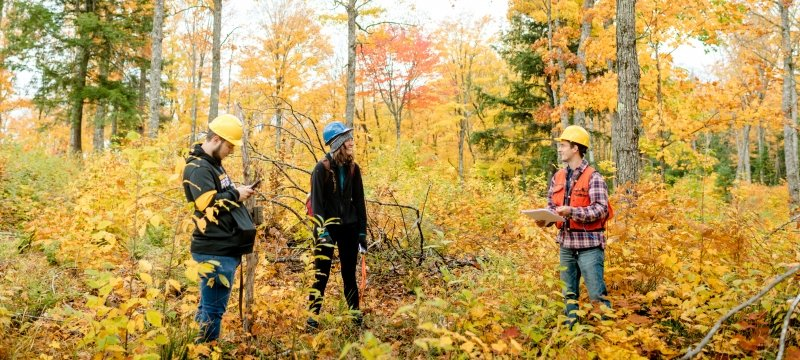 College of Forest Resources and Environmental Science