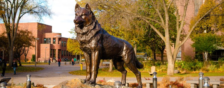 Husky statue at the center of Michigan Tech's campus.