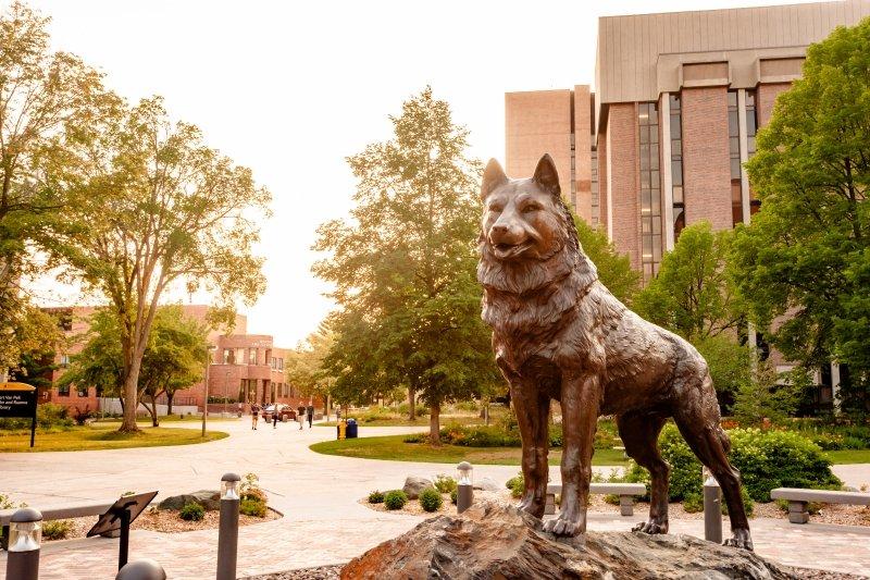 Husky statue.