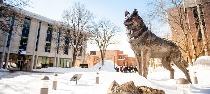 Husky Statue in February.