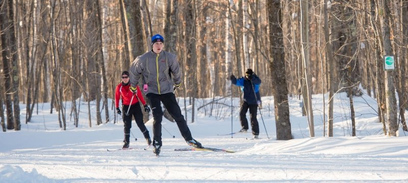 Alumni skiing on the Tech trails.