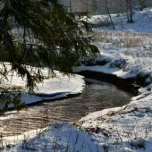 Stream flowing during winter