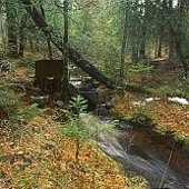 Parshall flume at mouth of boreal forested Wallace Lake watershed, Isle Royale National Park, Michigan.