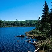 Boreal forest and Wallace Lake, under study since 1982, Isle Royale National Park, Michigan.