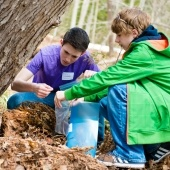 Two researchers in the woods at the base of a tree collecting samples