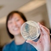A researcher holding up a petri dish with an organism growing inside