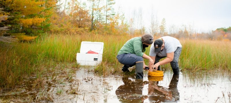 Water research in the field.