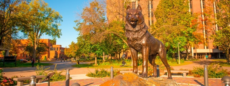 Husky Statue during the fall color season