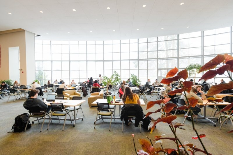 Students studying in the main library room.