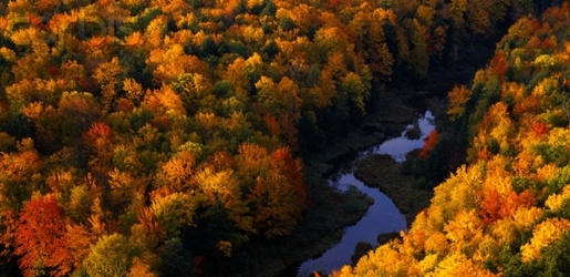 A river winding through colorful fall trees.