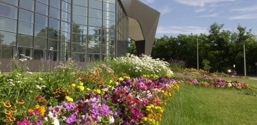 Photo of the flowers in from of the Rozsa Center during a sunny summer day.
