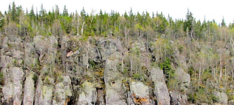 Shore Cliffs