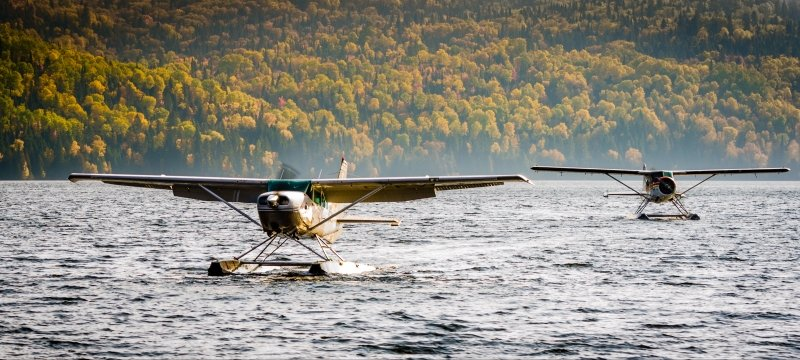 Seaplanes on the water with a forested backdrop