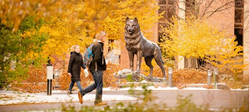Husky statue in fall