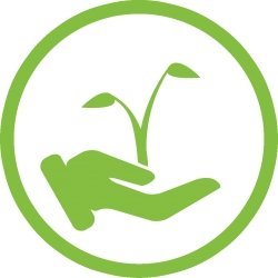 hand holding seedling icon