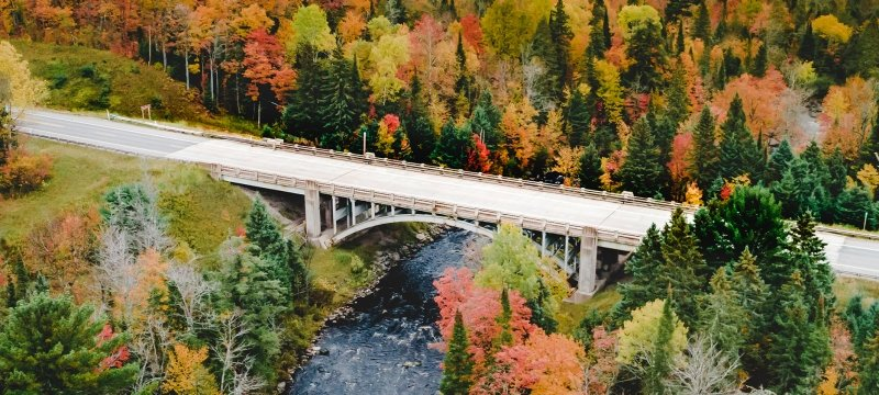 A bridge surrounded by fall trees