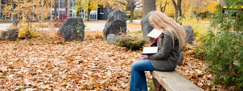 creative writing colleges in michigan