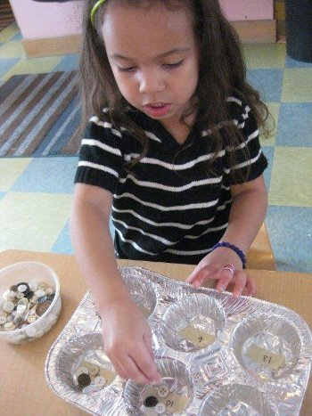 Child counting buttons into spaces in a muffin tin.