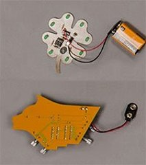 shamrock and husky logo circuit boards