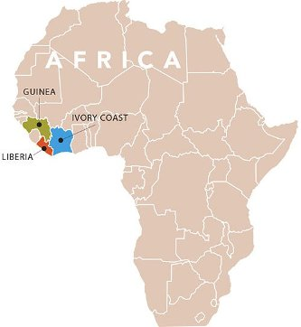 The Mulbah brothers left Liberia for Guinea and on to the Ivory Coast before arriving in America.