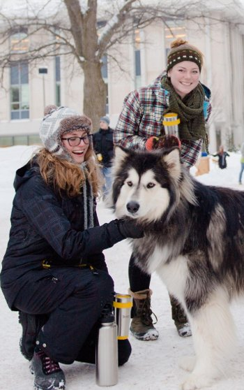Two students petting a husky dog.