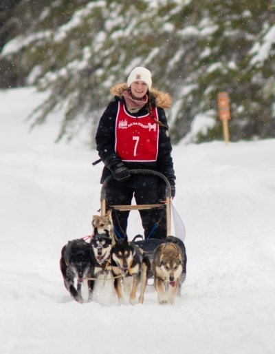 Dogs pulling a sled and rider.