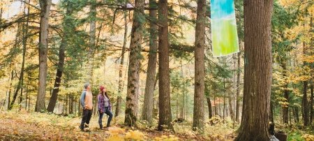 Two people looking at the art in the forest.