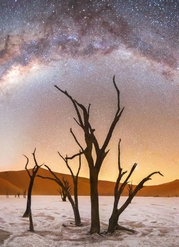 Milky Way over Deadvlei in Namibia.