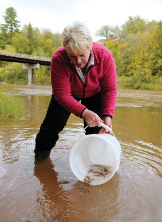Nancy Auer's research with sturgeons will also benefit from the GLRC.