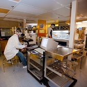 Micromechanical Applications and Processes Lab