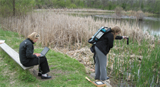 Two people collecting data in a wetland.