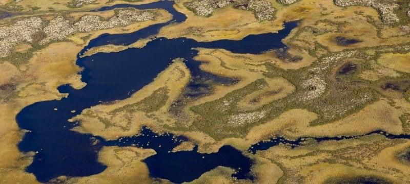 Arctic tundra wetlands.