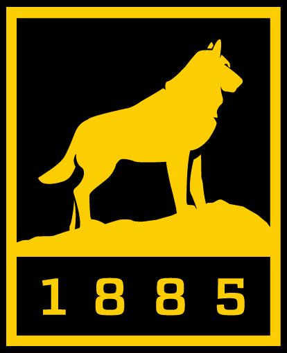 Image result for MTU logo