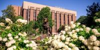 The Husky statue with a face covering framed by hydrangea bushes in front of the ChemSci       building.