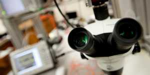 Looking through the lens of photonics and optics is an inherently interdisciplinary adventure.