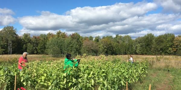 MTU Builds and Broadens Food Sovereignty with Indigenous, State and University Partners