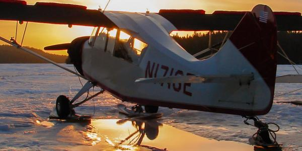 Skiplane flights support the researchers as they count moose and wolves and observe       wolf behavior.