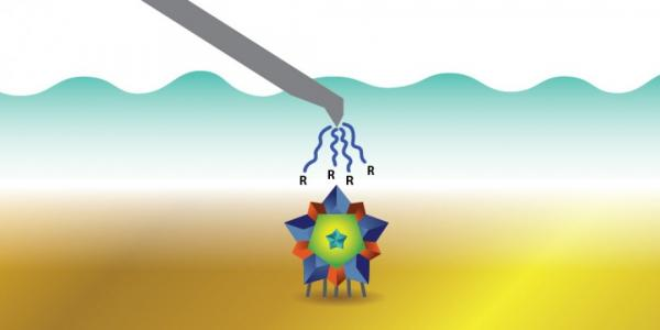 Engineers use a single-particle method to determine surface charge on a virus to characterize       samples.