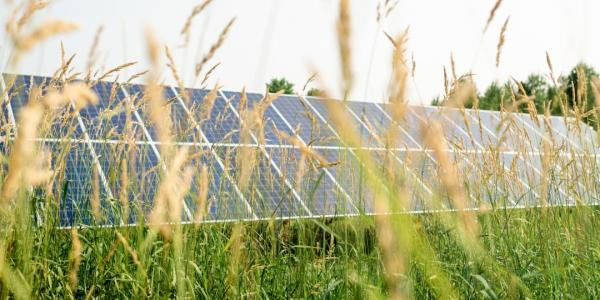 What are the social and cultural barriers that are hindering implementation of renewable       energy technology? Michigan Tech researchers are working with eight communities to       overcome barriers to renewable energy adoption.