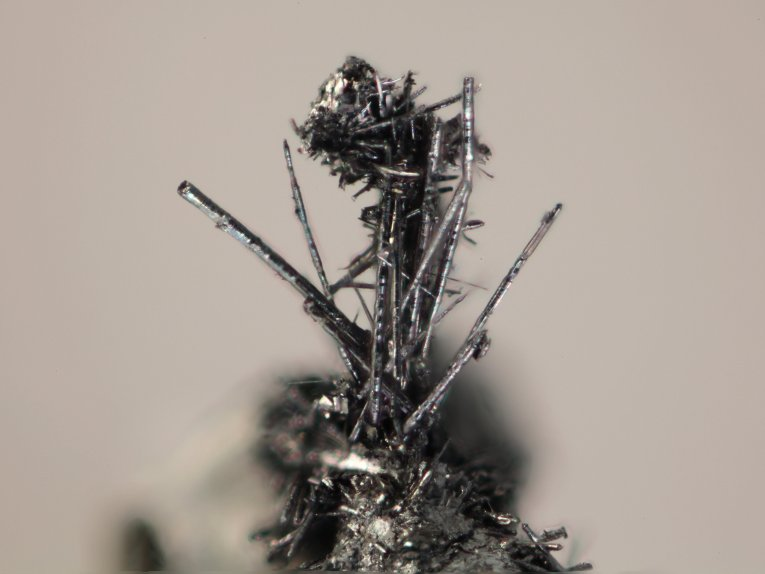 The tiny whiskers, which look to the naked eye like very fine hairs on other larger crystals, have probably been regularly cleaned off their host rocks.