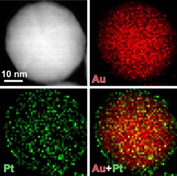 By coating nanoparticles in thin layers of platinum, only a few atoms thick, Xia's team was able to increase the sensitivity of test strips that detect prostate-specific antigen (PSA).