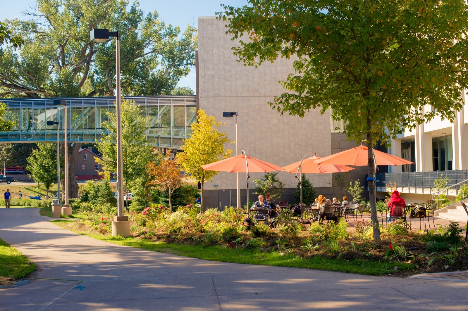 Outdoor library cafe. Center of campus.