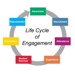 circular graph. The life cycle.