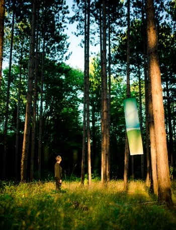A person looks at a cloth banner hung from pine trees in the forest.