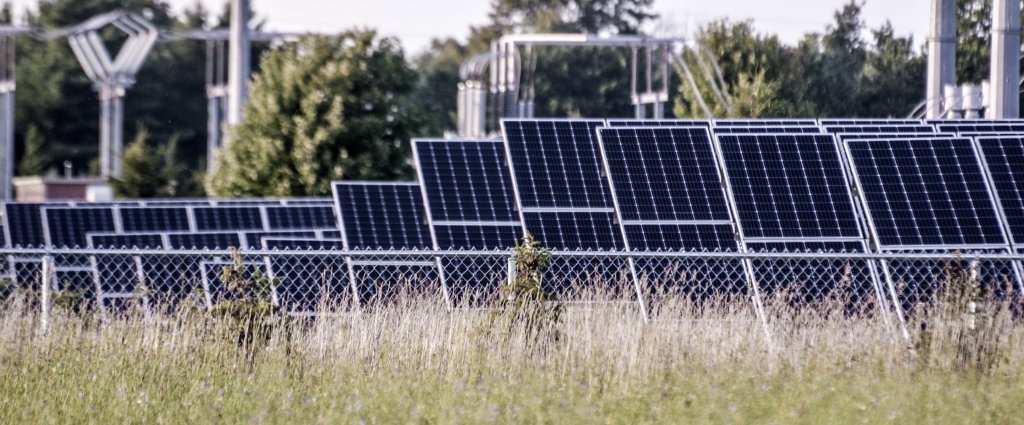 rows of solar panels next to a tall field of grass