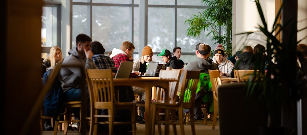 Students studying on computers