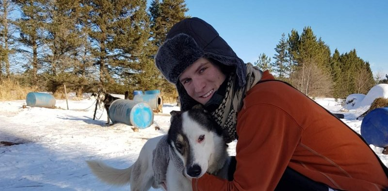 A young man is a fur hat with his sled dog outside with blue barrels on a snowy day in the dog kennel area